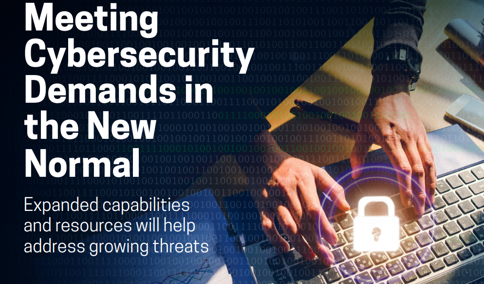 Cybersecurity demands in the new normal
